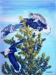 eagles, pine tree