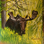 moose, forest