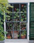 geranium, flower, window