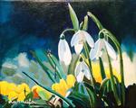 snodrops, flowers, spring flowers, spring