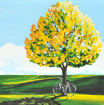 bicycle, tree, peace, sunny, art