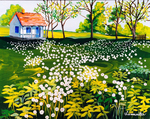 flowers, green grass, rustic, little house