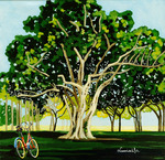 Tree, Banyan, bicycle, nature