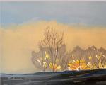 parkway, fog, sunrise, trees