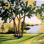 river, trees, shadows