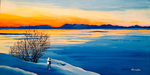 north, ice, snow, sunset