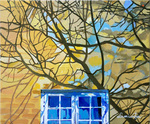 wall, stucco Wall, shades, window, Tree shades